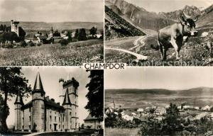 AK / Ansichtskarte Champdor Vue generale Chateau Paturage Champdor