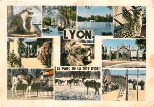 Lyon_France Le Parc de la Tete d'Or Details Lyon France