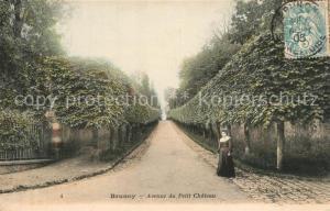 AK / Ansichtskarte Brunoy Avenue du Petit Chateau Brunoy