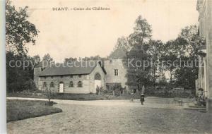 AK / Ansichtskarte Diant Cour du Chateau Diant