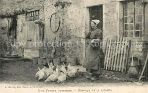 AK / Ansichtskarte La_Bresse Ferme Bressane Elevage de la volaille La_Bresse