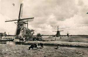 AK / Ansichtskarte Zevenhuizen Molens Tweemanspolder Landschaftspanorama Windmuehlen Zevenhuizen
