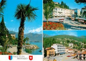 AK / Ansichtskarte Brissago_Lago_Maggiore Uferstrasse Palmen Ortsmotive Brissago_Lago_Maggiore