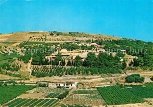 AK / Ansichtskarte Cnossos_Cnosse_Kreta Panorama Palast Cnossos_Cnosse_Kreta