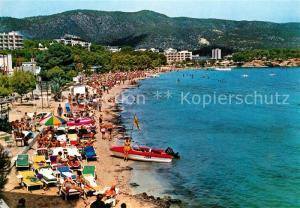 AK / Ansichtskarte Palma_Nova_Mallorca Vista parcial Playa Palma_Nova_Mallorca