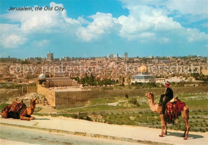 AK / Ansichtskarte Jerusalem_Yerushalayim Altstadt Blick vom Olivenberg Camelreiter Jerusalem_Yerushalayim 0