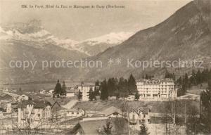 AK / Ansichtskarte Le_Fayet Hotel du Parc et Montagnes de Passy Le_Fayet