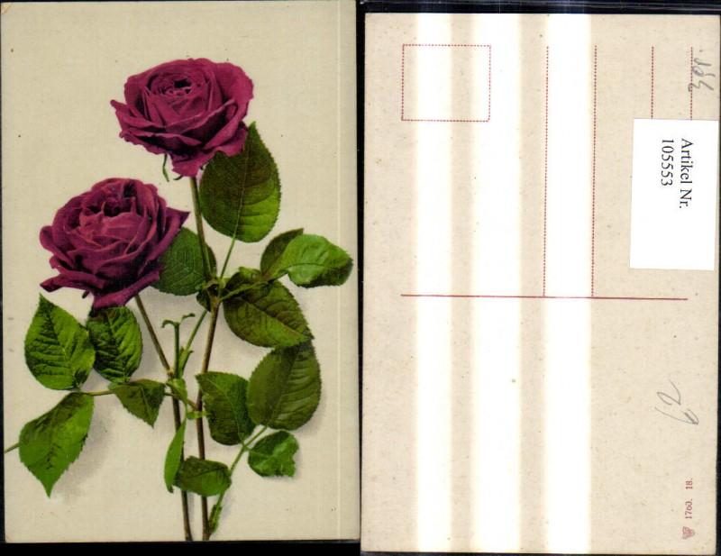 105016 tolle ak blumen rote rosen m haus nr 105016. Black Bedroom Furniture Sets. Home Design Ideas