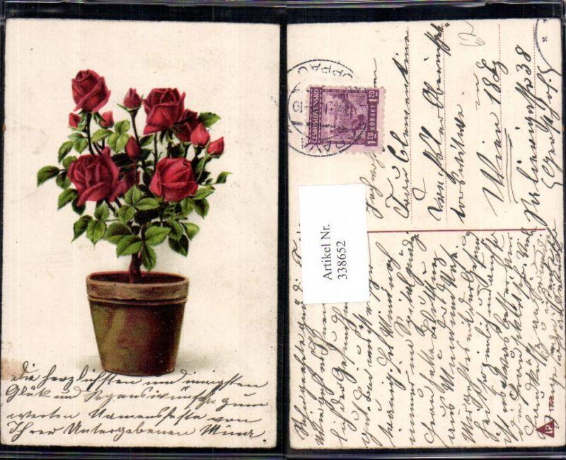 Blumen blumentopf rote rose nr 338652 oldthing for Blumentopf tiere