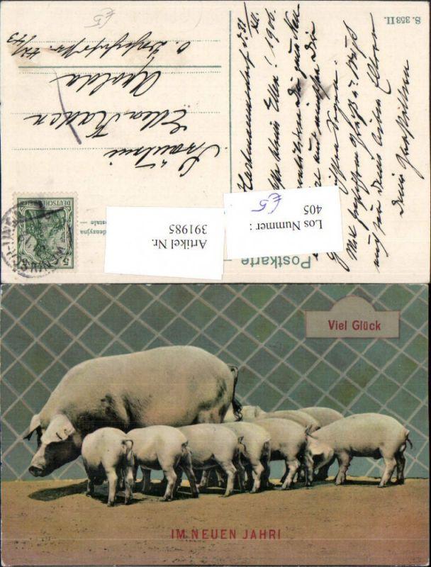 Neujahr Viel Glück Schwein Schweine Ferkel Nr. 391985 - oldthing ...