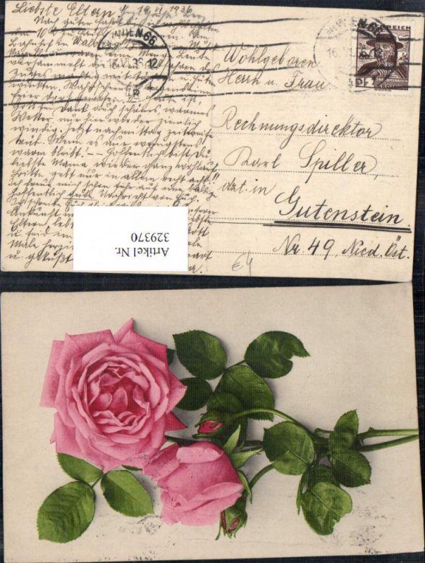 ak rosa bl hende rose nr 6735647 oldthing pflanzen tiere. Black Bedroom Furniture Sets. Home Design Ideas
