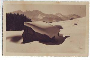 33187,Krispl bei Hallein Schlenkenalm Göll Adnet 1925