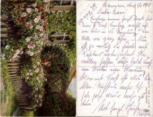 PFB 6079 Deutsche Meister H. Mass Im Rosengarten