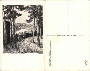 35893,Blick v. Sandl Wachau auf Weissenkirchen sign. Ulf Seidl