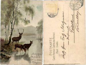 43684,Meissner & Buch Waldidyll Hirsche Wild Tiere
