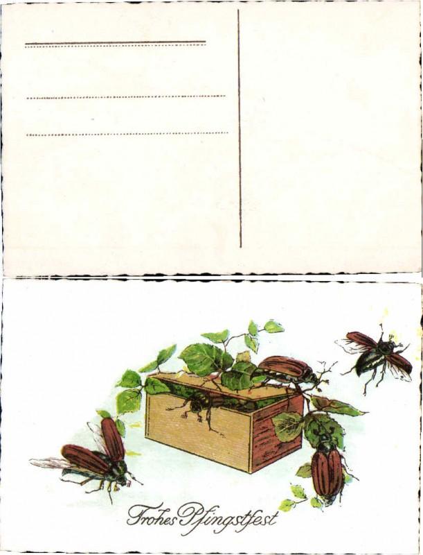 52029,Pfingsten Maikäfer sammeln Blätter