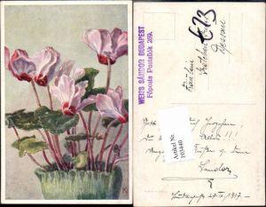 103440,Rudolf Konopa Blumen B.K.W.I 984-10