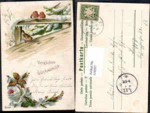119297,Litho Vogel Vögel Glückwunsch 1899