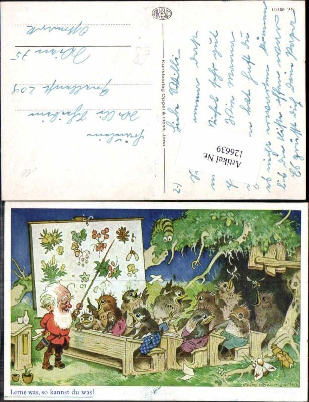 126639,Fritz Baumgarten Zwerg als Lehrer Vogel Vögel Schule pub Oppel & Hess 1511-1