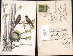 132599,Ostern Vogel Vögel Nest Eier