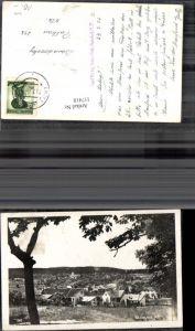 117418,Enzesfeld Ansicht 1952