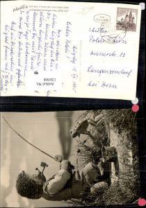 126508,Mecki Igel Nr 30 Beiß an Fischen Angeln