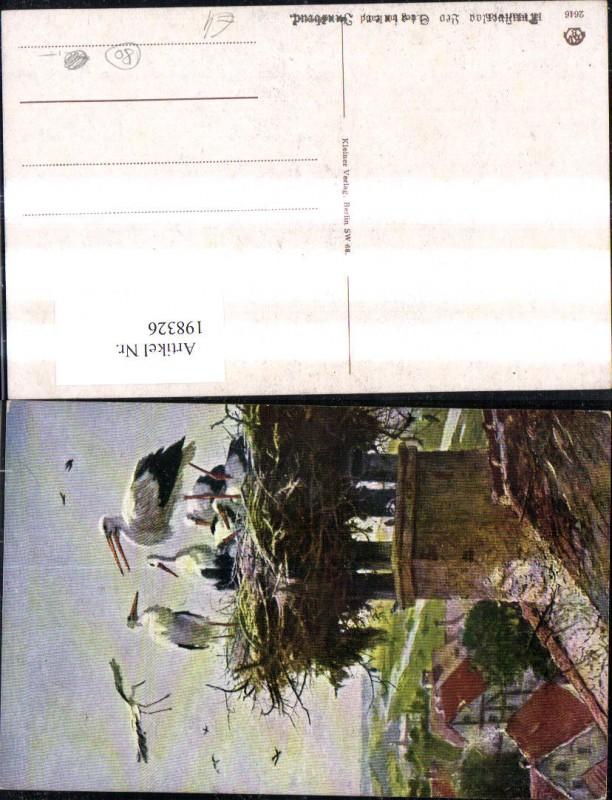 198326,Tier Storch Störche Nest a. Schornstein Dach