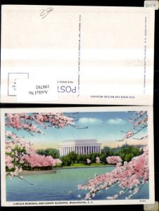 198792,Washington D. C. Lincoln Memorial and Cherry Blossoms