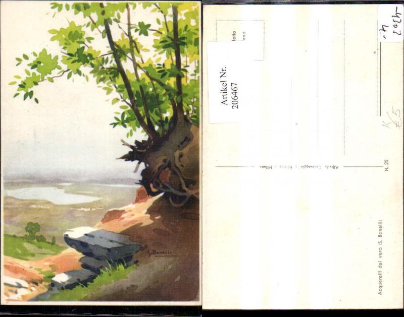 206467,Künstler AK S. Bonelli Landschaft