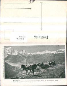 223530,Reklame Ak Nestle condens. Alpenmilch i. vollkommener Ersatz f. Vollmilch u. Sahne Kühe v. Bergkulisse
