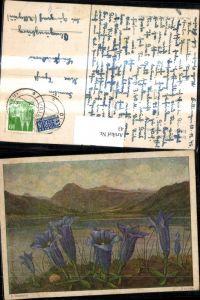 43,Künstler Ak E. Stegmann Enzian Blume v. See Bergkulisse