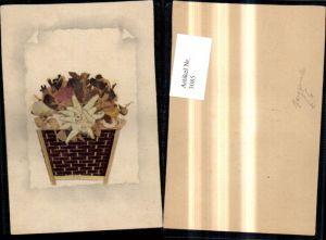 3085,Künstler Karte Handgemacht Korb m. Blumen Blüten Echten Aufgeklebten Edelweiß Trockenblumen Blätter
