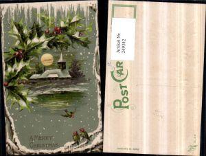 249342,Präge Litho AK Weihnachten Winterlandschaft Kirche Mond Mistelzweige Vögel