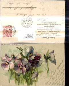 265347,Theo Stroefer 1882 Künstler Ak C. v. Sivers Blumen Stiefmütterchen