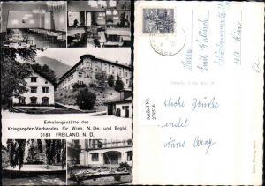 278536,Freiland Erholungsstätte d. Kriegsopfer-Verbandes Springbrunnen Speisesaal Mehrbildkarte