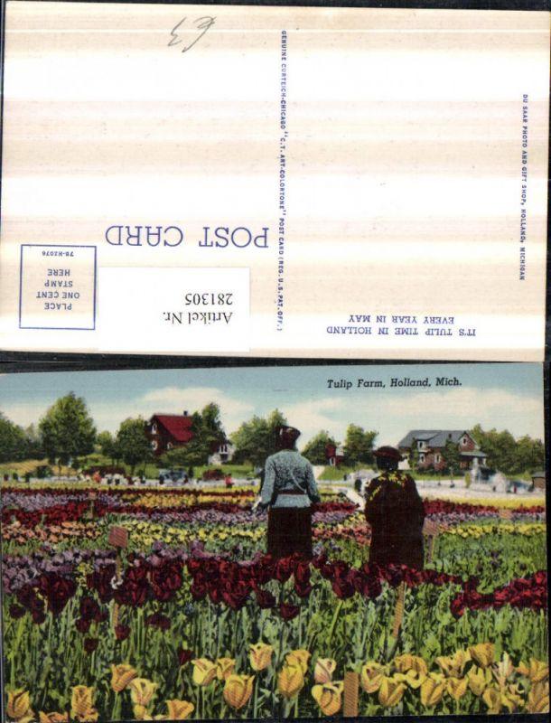 281305,Michigan Holland Tulip Farm Tulpen Blumen 0