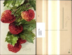 268924,Künstler Ak M. M. Brasch Erdbeeren Fürchte Obst