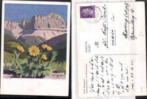 301425,Künstler Ak Erich Stegmann Adonisröschen a. Rosengarten Blumen