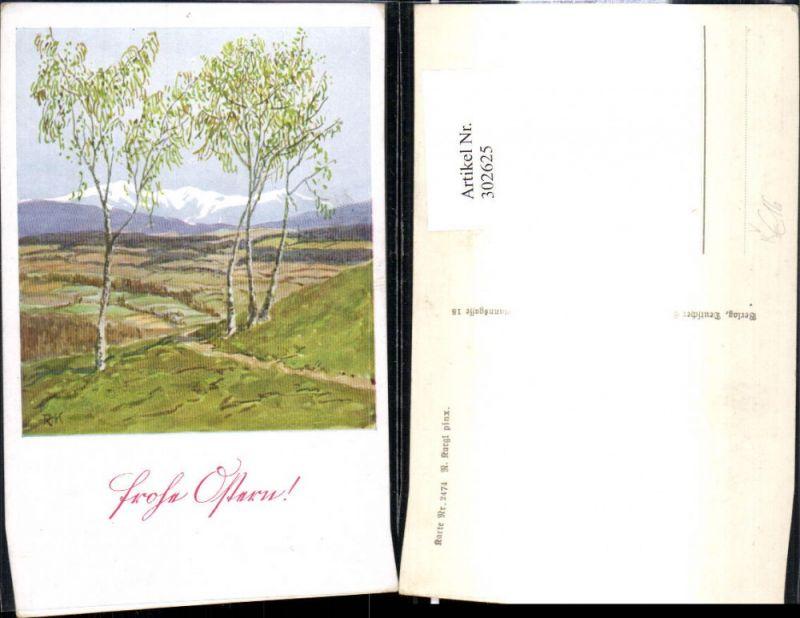 302625,Deutscher Schulverein 2474 Künstler R. Kargl Birken Landschaft Bergkulisse Ostern