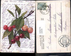 329470,Künstler Ak Kirschenzweig Kirschen Zweig Früchte Obst pub B.K.W.I. 745/20
