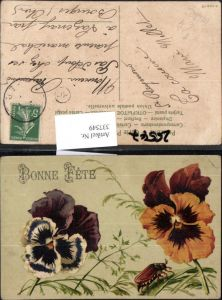337549,Blumen Stiefmütterchen Käfer Maikäfer Bonne Fete