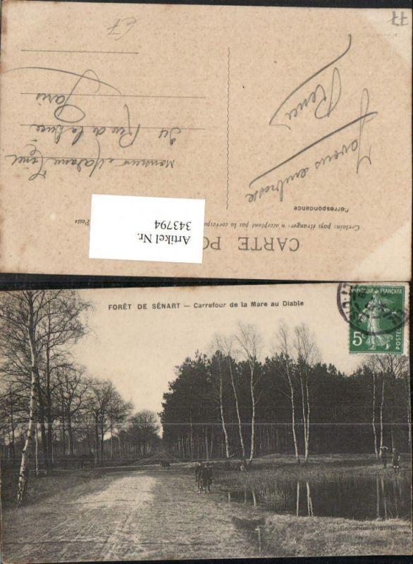 343794,Ile-de-France Seine-et-Marne Foret de Senart Carrefour de la Mare au Diable Wald