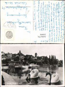 350494,Murten Morat le port Teilansicht Hafen Schwäne Kt Freiburg