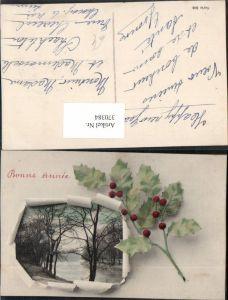 370384,Neujahr Landschaft Passepartout Zerrissenes Papier Stechpalme