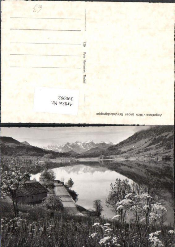 390992,Aegerisee Ägerisee See geg. Urirotstockgruppe Bergkulisse Kt Zug