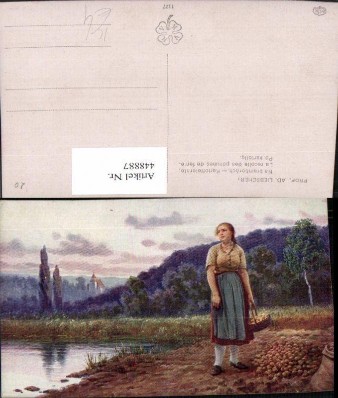 448887,Künstler AK Ad. Liebscher Kartoffelernte Feld Frau Tracht Korb