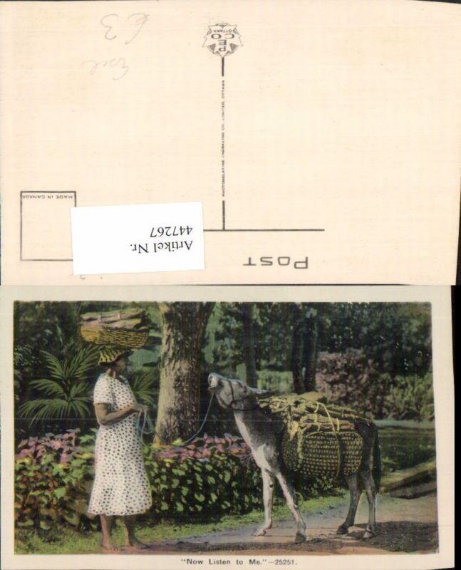 447267,Now Listen to Me Esel Packesel Tier Frau m. Kleid