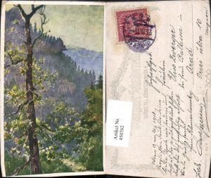 450762,Deutscher Schulverein 429 Künstler Hofecker Wilder Steingraben