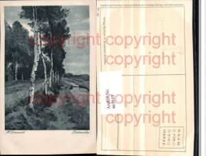 463557,Künstler AK Hugo Darnaut Birkenallee Bäume