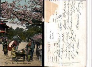 481485,Japan Tokio Under the Cherry Blossoms Kirschblüte Kinderwagen